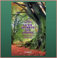 «La vie secrète des arbres»