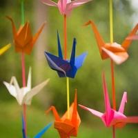 Origami, après la première séance!