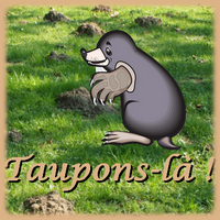 TAUPONS-LÀ !